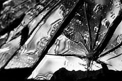 La noche de los cristales rotos