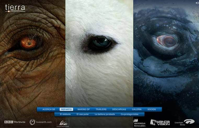 Hagamos algo por nuestro planeta