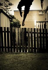 Quisiera volar muy lejos... (3 de 3)