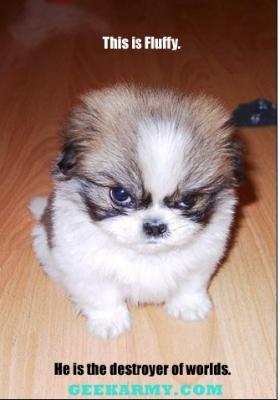 Odio los lunes!